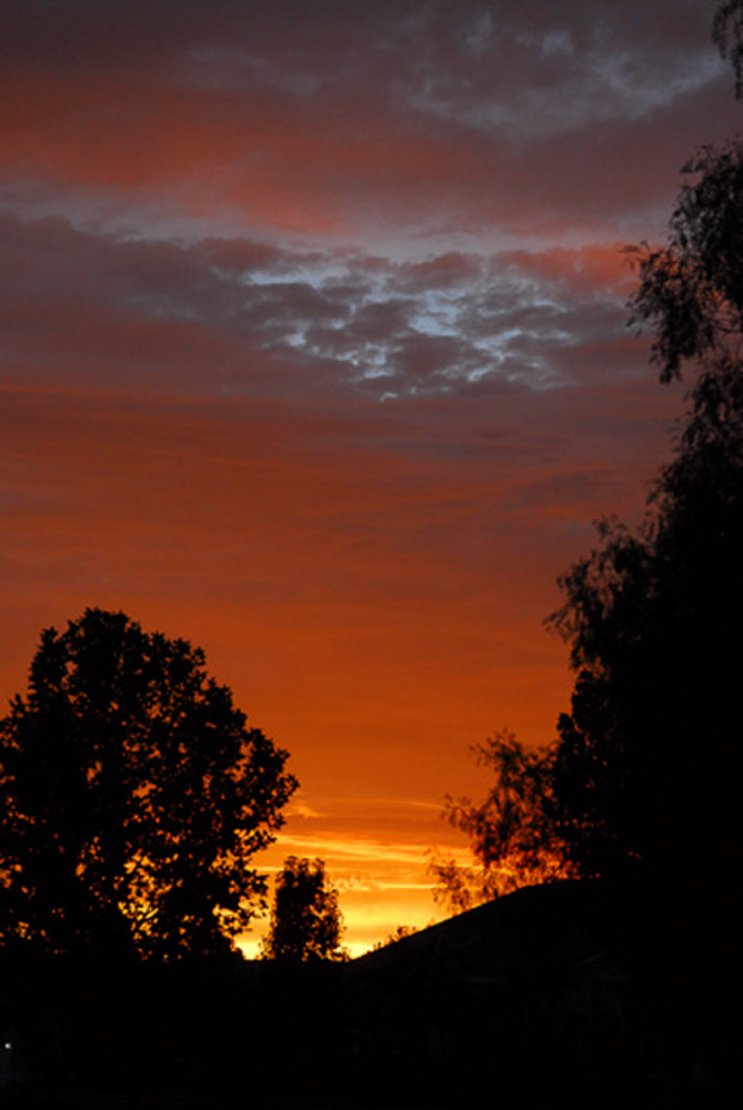 Brentwood_080805