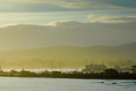 Monterey_080225_2548