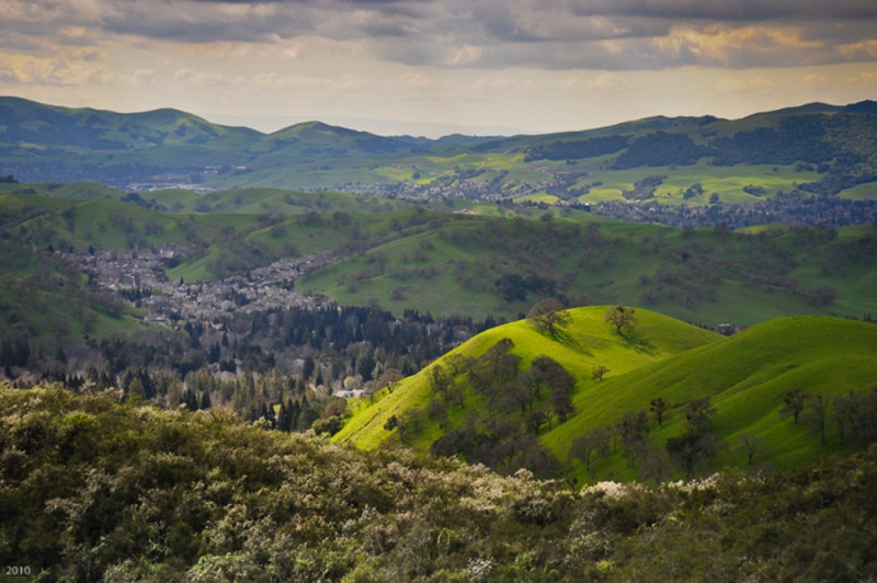 Springtime in the Contra Costa hills, March
