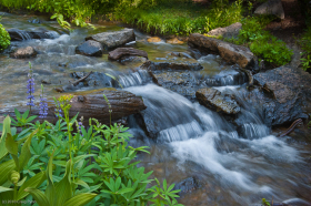 Kings Creek, Lessen Volcanic National Park, CA, August