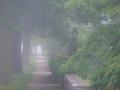 5:23 a.m., June 1, South River Lane, Geneva, IL