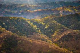 Winter afternoon: Diablo foothills