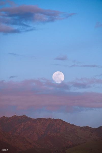 April Moonrise
