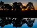 Sunset Reflection: Sacramento River