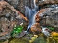 Waterfall: Heather Farm Garden Center, Walnut Creek, CA
