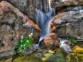 Waterfall: Heather Farm Garden Center, Walnut Creek, CA