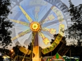 The Ranger: Walnut Festival - Walnut Creek, CA