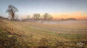 April 8: Foggy Morning, Madison