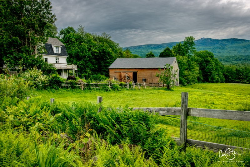 June 25: Farm Near Jeffrey NH
