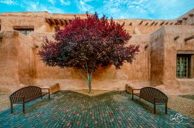 July 17: New Mexico Museum, Santa Fe