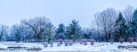 Feb 6: Icy Morning on Watts Road, Madison