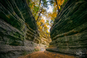 Oct 23: Canyon, Starved Rock State Park, Illinois