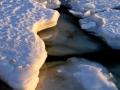 Ice_012304_3484