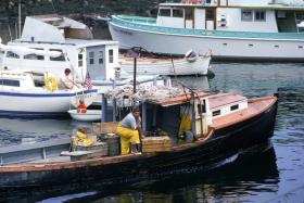 fisherman1_6806