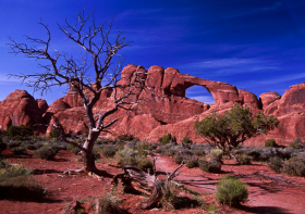 SkylineArch_Arches024