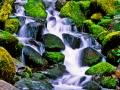 SolDucStream_C_052302