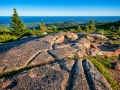 Acadia_180620--2.jpg