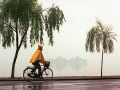 Bicylist_9405xx