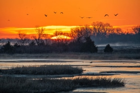 Sunrise_D852021