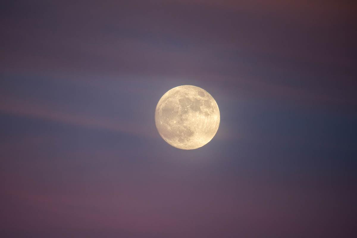 Strawberry Moon III
