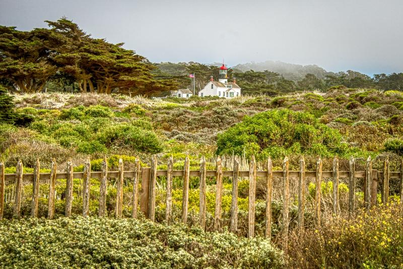 PGrove-Monterey-5949.jpg