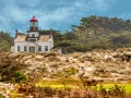 PGrove-Monterey-.jpg