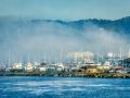 PGrove-Monterey-1.jpg