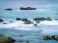 PGrove-Monterey-5990.jpg