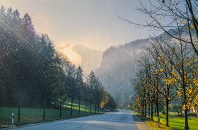 Roadside scene outside Gridnelwald, Switzerland.