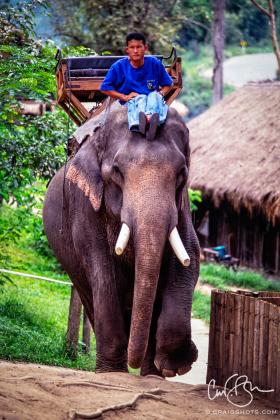 Thailand_1997-2