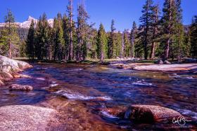 Yosemite_2001-14.jpg