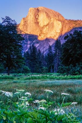 Yosemite_2001-7.jpg