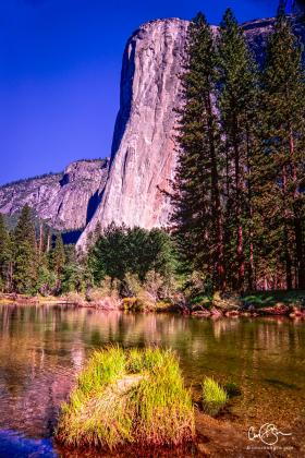 Yosemite_2001-8.jpg