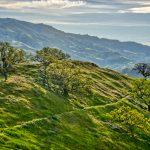 Borges Ranch — Walnut Creek, CA